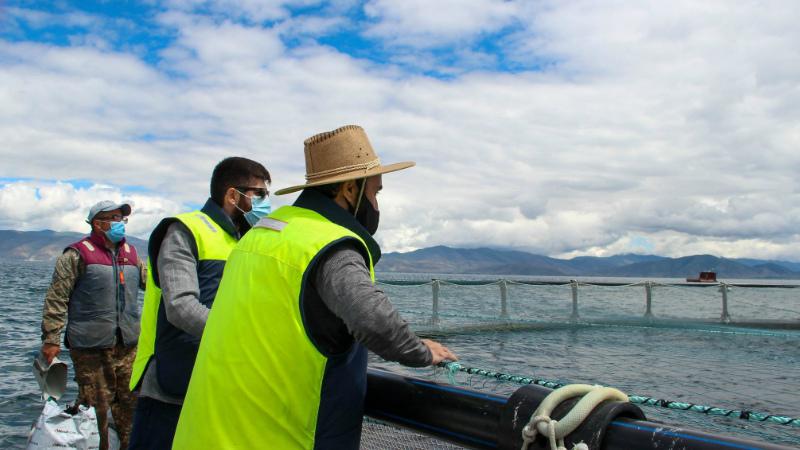 Սևանի ափին առաջին անգամ գործարկվել է իշխանի տեսակավորման սարքը․ փոխնախարարները Գեղարքունիքի մարզում էին
