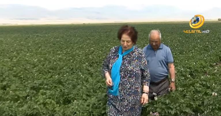 Ռոզա Ծառուկյանի գլխավորած «Մուլտի Ագրո»-ն աշխատատեղեր է ապահովում 100-ավոր վարդենիսցիների համար