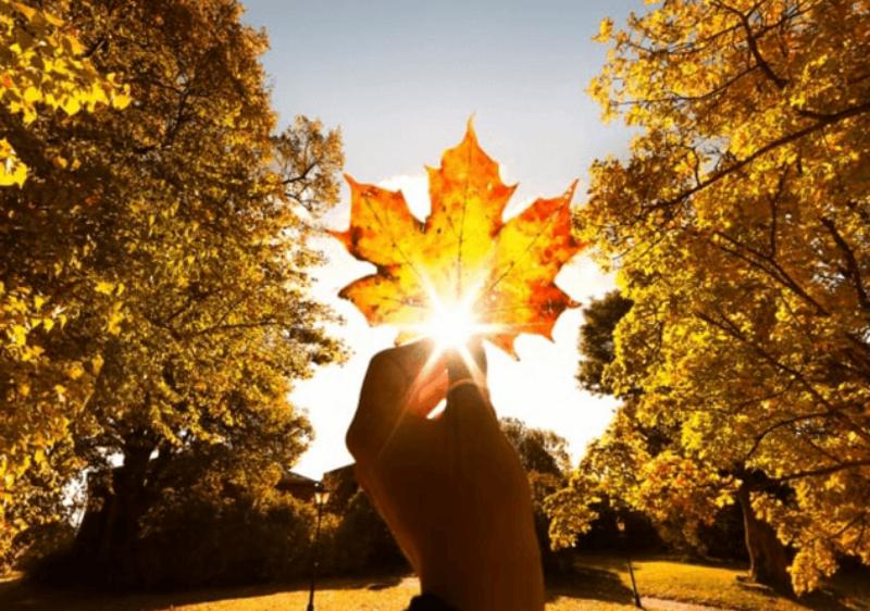 Սեպտեմբերի 7-ից ևս մեկ քայլ կանենք դեպի աշուն․ Գագիկ Սուրենյան