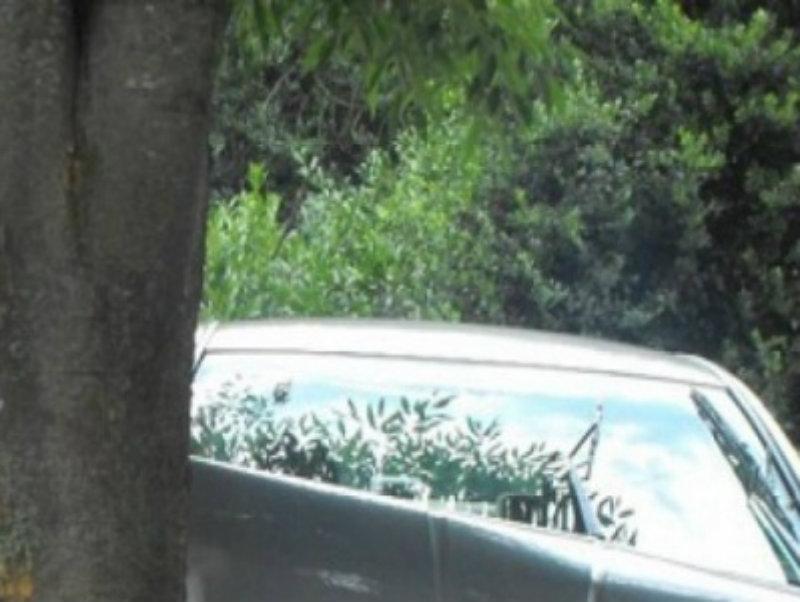 Կին վարորդը Նոր Խարբերդում BMW-ով ծառին է բախվել