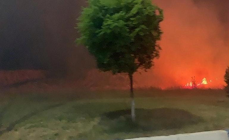 Հերթական հրդեհը. այս պահին Իսակովի պողոտայում այրվում է խոտածածկ տարածք (տեսանյութ)