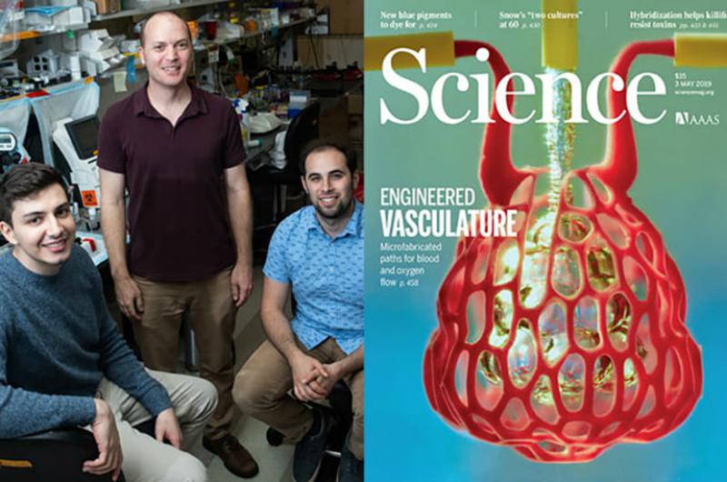 Հայ գիտնականի ղեկավարած գիտախումբը նշանակալի բացահայտում է կատարել օրգանների 3D տպագրության ոլորտում