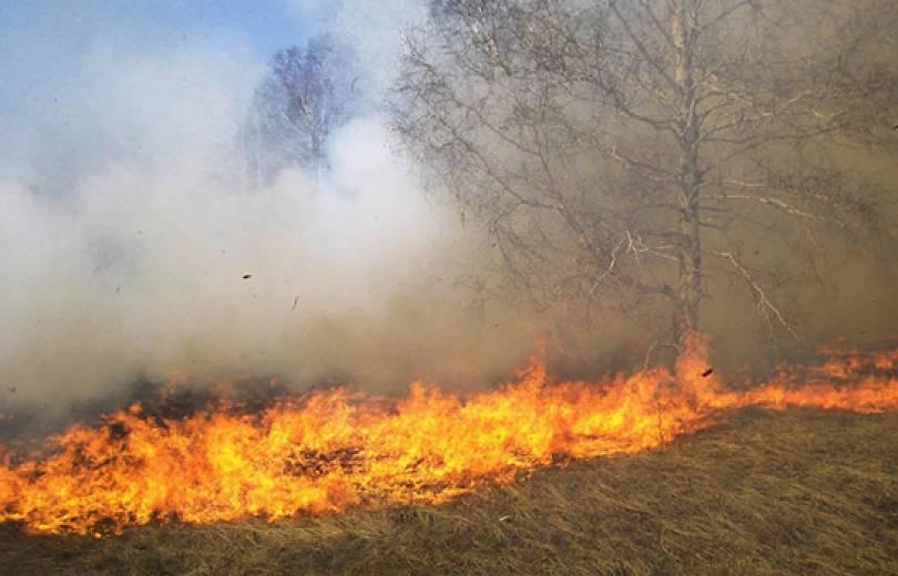 Դիլիջանում 1հա խոտածածկ տարածք է այրվել