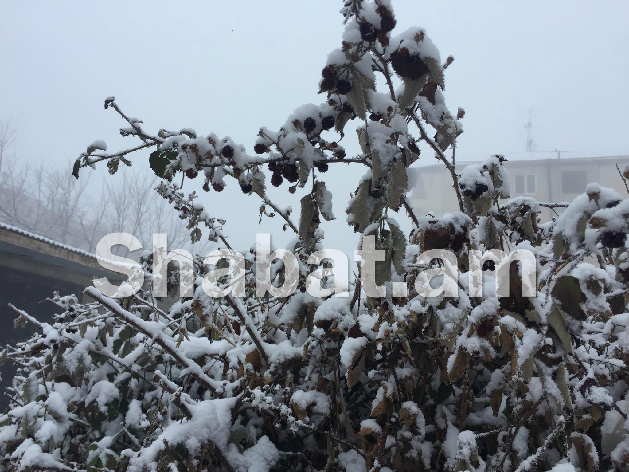 Առաջիկա օրերին առանձին շրջաններում ձյուն է սպասվում