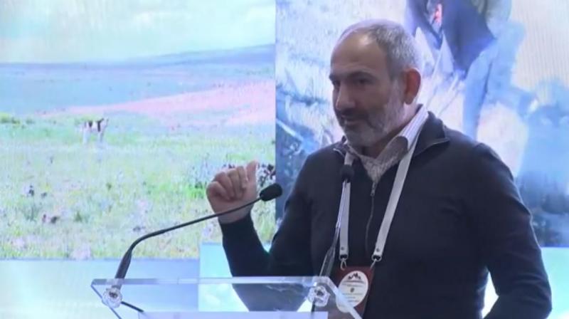 Վարչապետն ամփոփում է «Իմ քայլը հանուն Արագածոտնի մարզի» ներդրումային համաժողովը