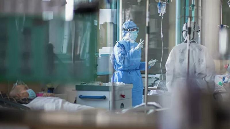 Հայաստանում կորոնավիրուսով վարակված 115 անձանցից 13-ը 60-ից բարձր տարիքի են