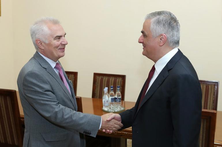 Մհեր Գրիգորյանն ընդունել է ԵՄ պատվիրակության ղեկավար դեսպան Պյոտր Սվիտալսկիին