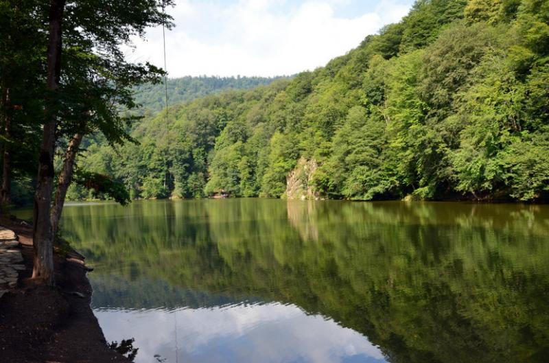 Պարզ լճի հարակից անտառում փրկարարները  գտել են մոլորված քաղաքացիներին