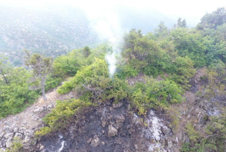 Խոշոր հրդեհ Լեհվազ-Վարդանիձոր ավտոճանապարհին