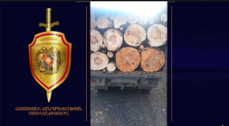 Գուգարքի և Դիլիջանի ոստիկանները ապօրինի ծառահատման դեպքեր են բացահայտել (տեսանյութ)