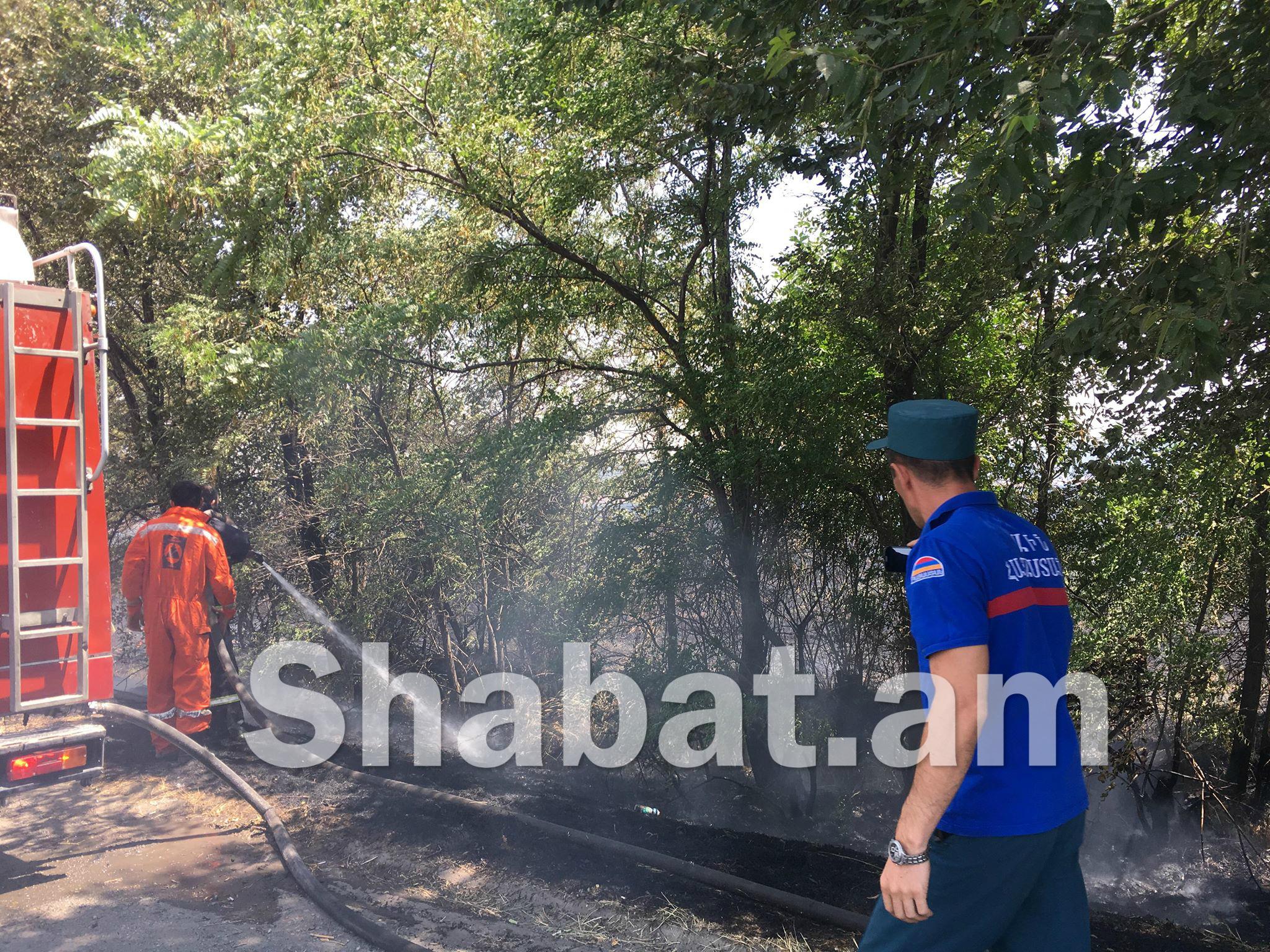 Երևան- Արմավիր ճանապարհին հրդեհվել է խոտածածկ տարածք. մանրամասներ դեպքի վայրից (լուսանկար, տեսանյութ)