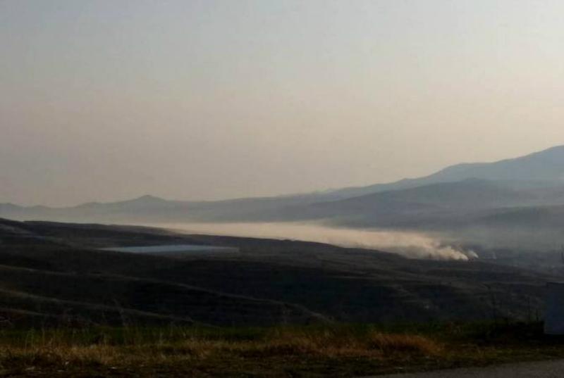 Ազատամուտում փայտածուխի արտադրության բացասական հետևանքները հաստատվել են. Տավուշի մարզպետարան