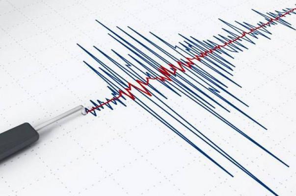 Սպիտակից ոչ հեռու երկրաշարժ է տեղի ունեցել