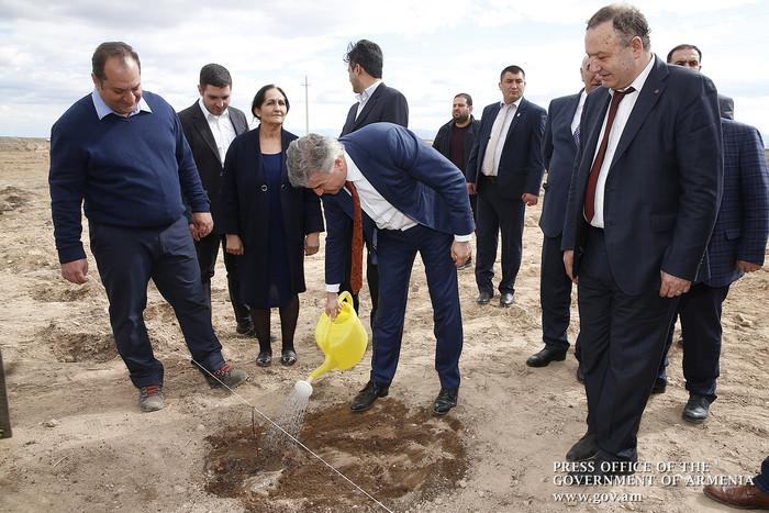 Վարչապետը Արմավիրի մարզում ծանոթացել է ջայլամաբուծության, պիստակի այգիների հիմնման և գինեգործության ծրագրերին