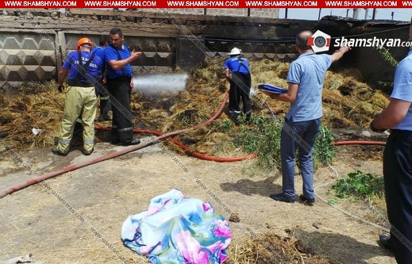 Երեւանում, վառվող խոտի դեզի մոտ, հայտնաբերվել է 6-ամյա երեխայի կիսաայրված դի