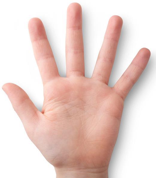Ինչ է պատմում ձեռքի չափն անձի մասին