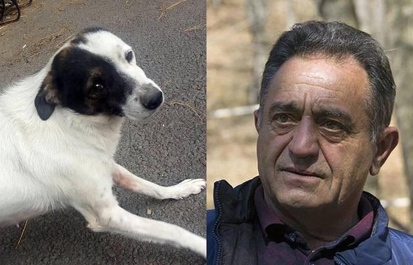 Դիլիջանի ազգային պարկի տնօրենին մեղադրանք է առաջադրվել՝ շանը կրակելու փաստով հարուցած քրեական գործով