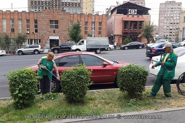 Մայրաքաղաքում շարունակվում են ծառերի բների կրապատման աշնանային աշխատանքները (լուսանկարներ)