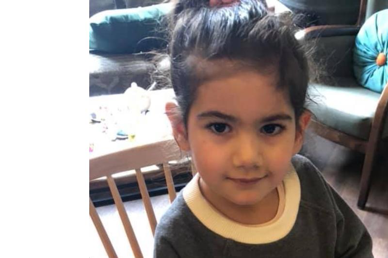 Նիկոլ Փաշինյանի փոքրիկ դուստրը խաշ է ուտում ․ (տեսանյութ)