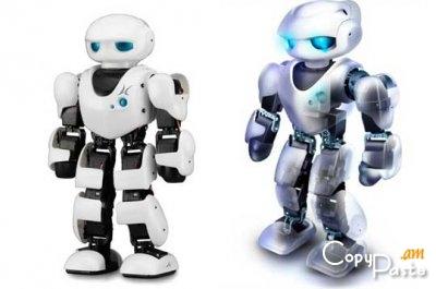 Համացանցում է հայտնվել տեսանյութ բյուջետային ռոբոտ-մրջնի մասին