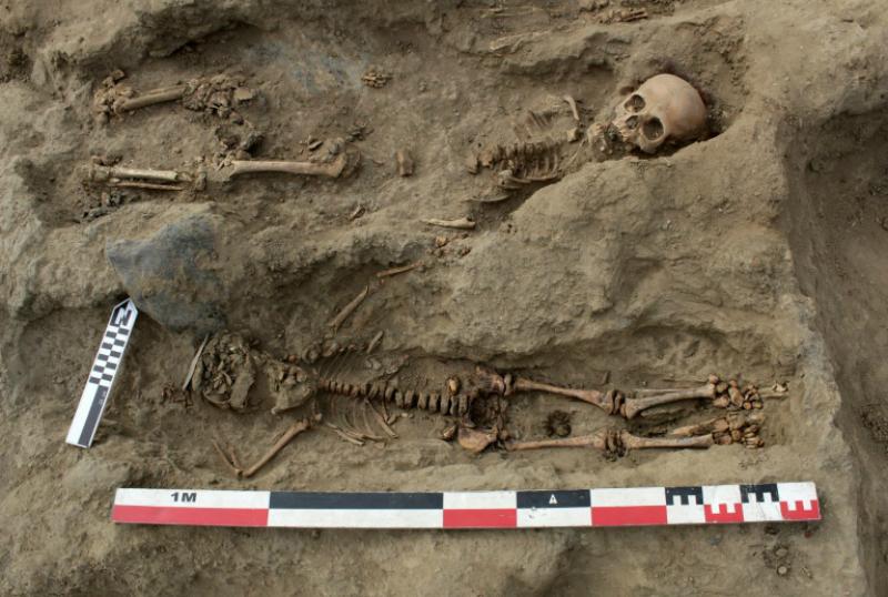 Պերուում հայտնաբերվել է զոհաբերված հարյուրավոր երեխաների դամբարան