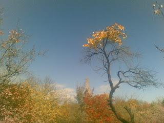 Եղանակը` Հայաստանում
