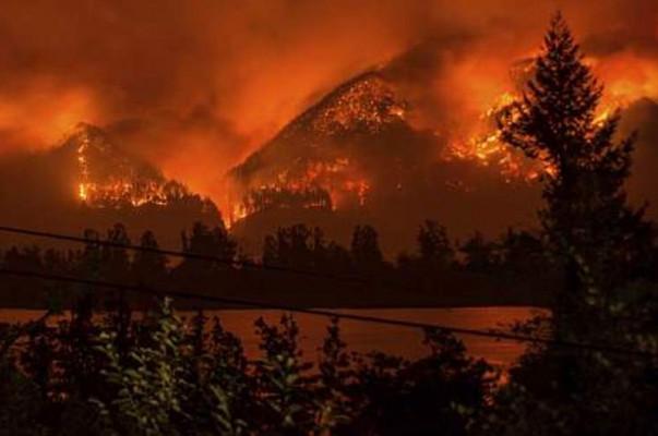 ԱՄՆ-ում դատարանը 15-ամյա դեռահասին պարտավորեցրել է մոտ 37 մլն դոլար տուգանք վճարել անտառը հրդեհելու համար