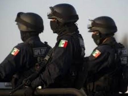 Մեքսիկայում ձերբակալել են նարկոբարոն Էլ Չապոյի օդաչուին