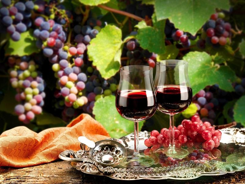 Մայիս 11-12-ը Երևանում կանցկացվի «Գինու օրեր» միջոցառում