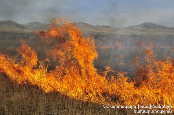 Քանաքեռ-ԳԵՍ-ի մոտակայքում այրվում է խոտածածկ տարածք
