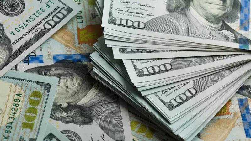 Երևանցի ամուսինները 40 հազար դոլար են գողացել օդանավի իրենց հարևանուհուց