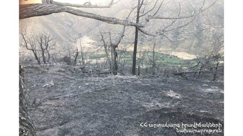 Պարզվել է, թե ինչ հանգամանքներում է այրվել Լեհվազ համայնքի անտառը