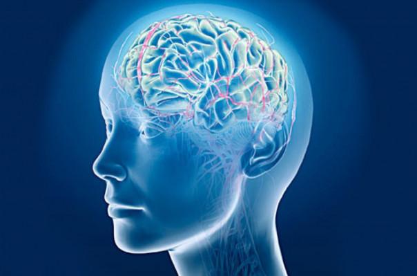 Գիտնականները գլխուղեղի մեջ «թեժ կետեր» են հայտնաբերել, որոնք կարող են քաղցկեղի նշաններ լինել