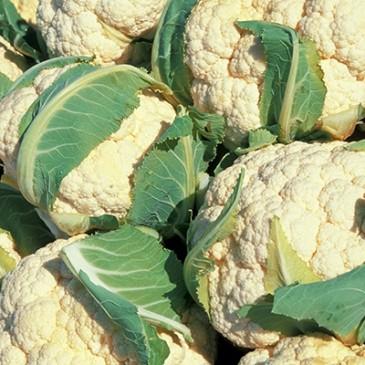 Ծաղկակաղամբն՝ ամենաօգտակար բանջարեղեն