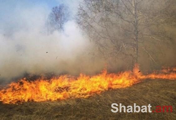 Այրվել է մոտ 3000 քմ բուսածածկույթ