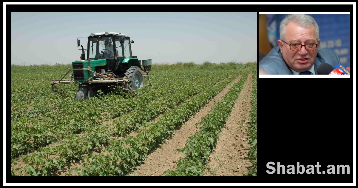 Դեռ 1999-ի գյուղատնտեսական ապահովագրության պիլոտային ծրագիրը  պատվեր է եղել, գումարի լվացում. ի՞նչ սպասել այս անգամ