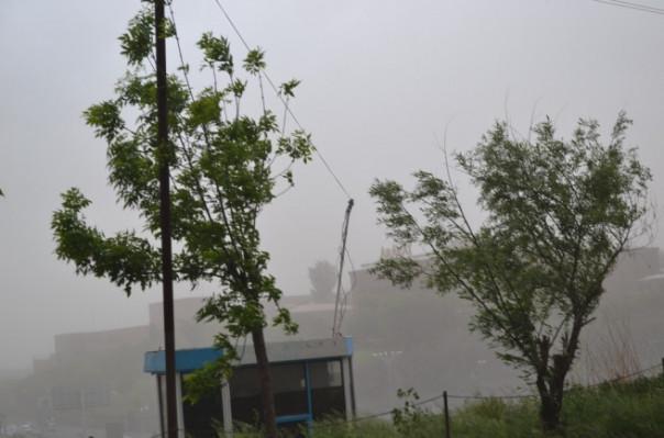 Ուժեղ քամու հետևանքով ծառը կոտրվել և ընկել է ռեստորանային համալիրը սնուցող էլ. ենթակայանի վրա