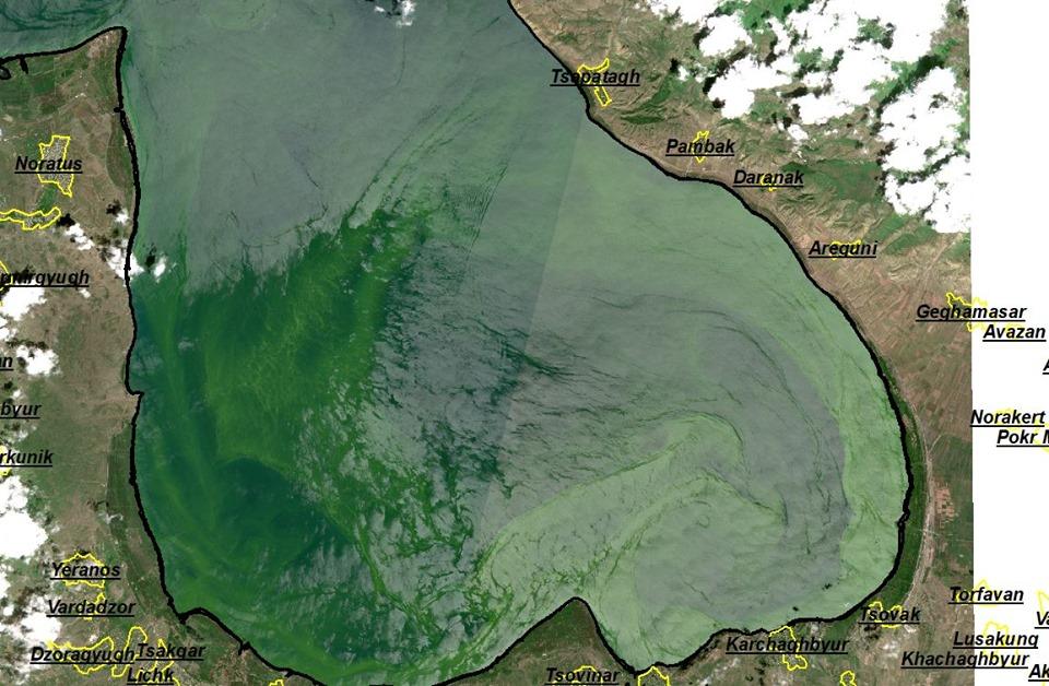 Նոր արբանյակային լուսանկարներ «ծաղկած» Սևանա լճից