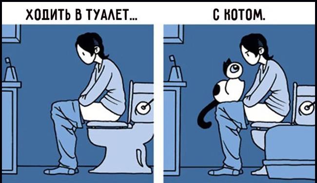 Նկարներ՝ կատուների և նրանց տերերի հետաքրքիր հարաբերության մասին (ֆոտոշարք)