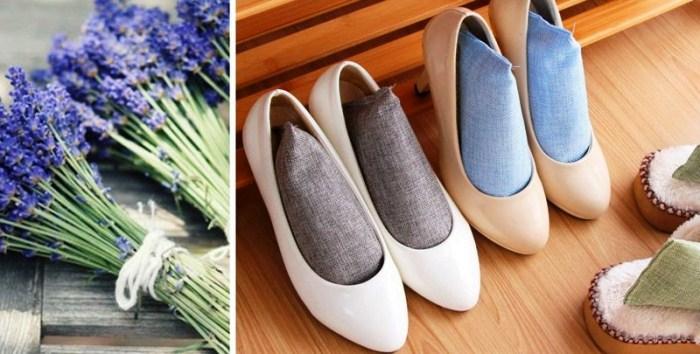 Կոշիկի տհաճ հոտից ազատվելու մի քանի խորհուրդ (լուսանկարներ)