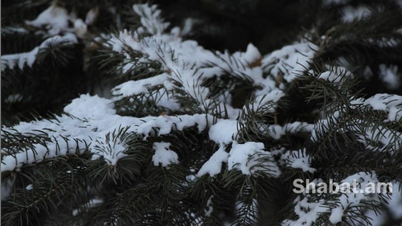 Վաղվանից հանրապետության տարածքում ջերմաստիճանը կբարձրանա 6-8 աստիճանով. առանձին շրջաններում սպասվում է ձյուն