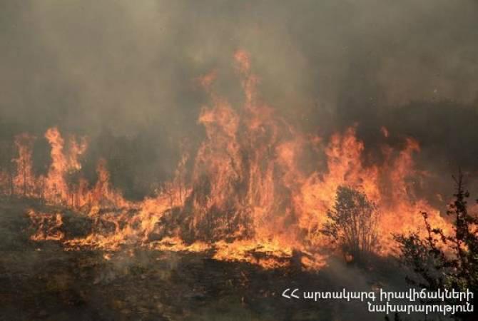 ՀՀ ԱԻՆ-ի հսկողությամբ Երևանում իրականացվել է մոտ 6 հեկտար խոտածածկ տարածքի այրում