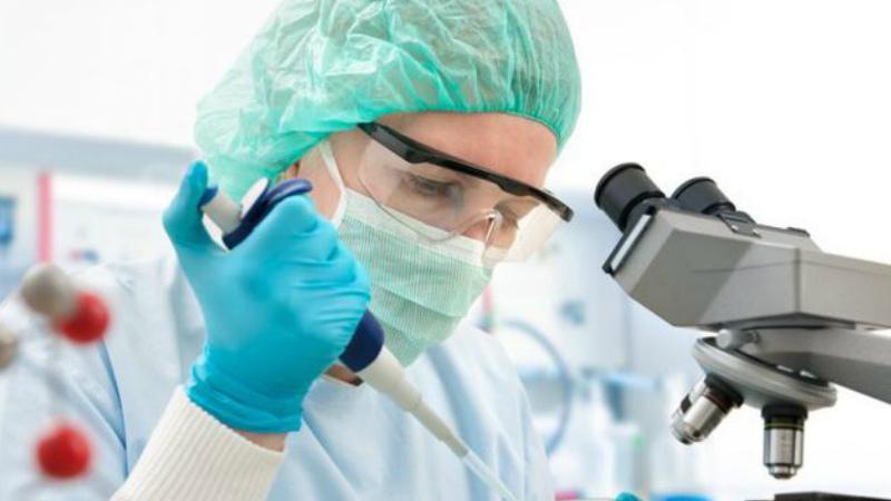 ԱՄՆ գիտնականները  կորոնավիրուսին  հակազդող հակամարմին են հայտնաբերել