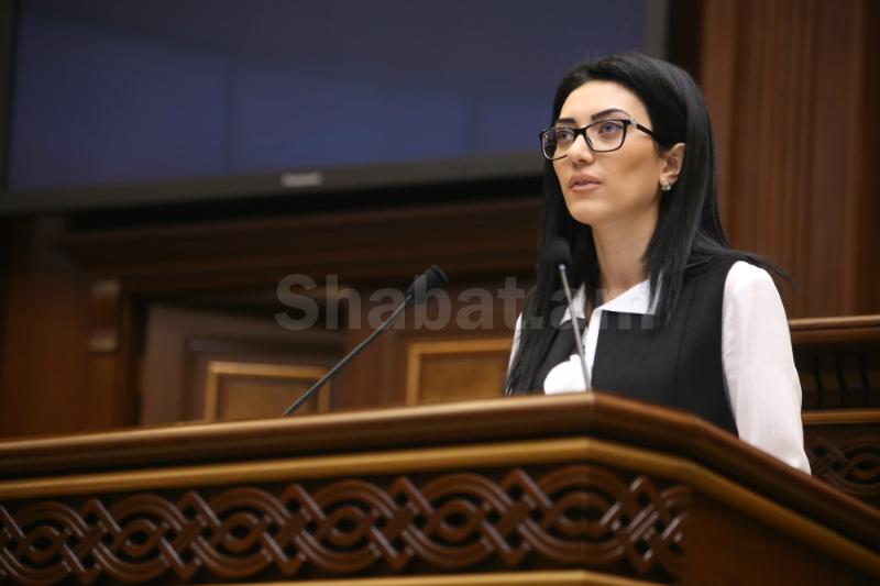 ՊԵԿ նախագահը կանոնից շեղում էր թույլ տվել՝ ասելով նպատակների մասին. Արփինե Հովհաննիսյան