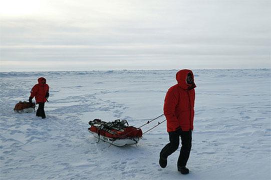 Կոմի գիտնականները սովորել են բարձրացնել մարդու՝ Արկտիկայում ապրելու հարմարվողականությունը