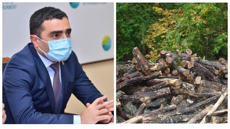 Անտառամերձ բնակավայրերի բնակիչներին կտրամադրվեն թափուկ վառելափայտի օրենքով սահմանված չափաքանակներ․ բնակավայրերի ցանկը թարմացվել է