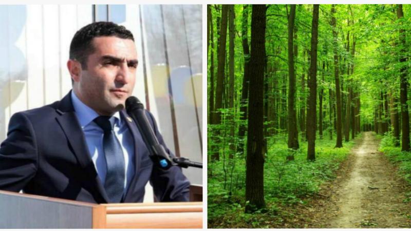 10 մլն ԱՄՆ դոլար կուղղվի անտառների վերականգնմանը և կստեղծվեն հարյուրավոր նոր աշխատատեղեր. Ռոմանոս Պետրոսյան