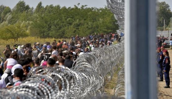 Այս տարի ավելի քան 800.000 մարդ փախստականի կարգավիճակ տրամադրելու խնդրանք է ներկայացրել Եվրոպայի երկրներում