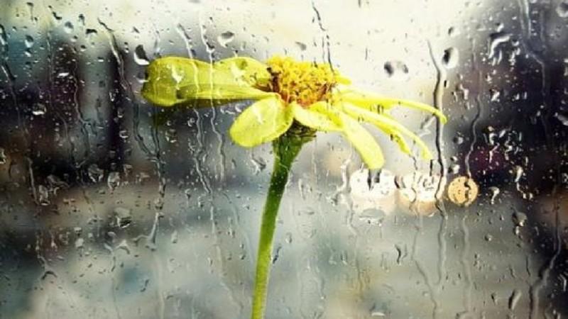 Երևանի առանձին հատվածներում սպասվում են կարճատև անձրև և ամպրոպ