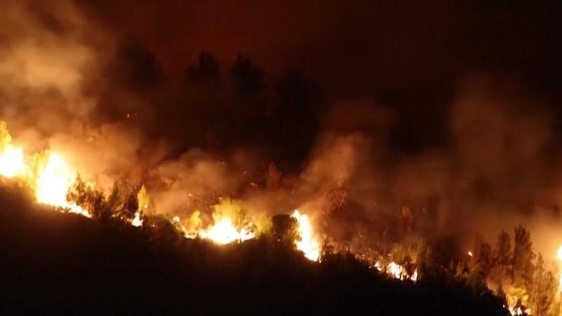 Հունաստանում փորձում են մարել անտառային հրդեհները, որոնք արդեն հասցրել են բազմաթիվ տներ և ֆերմաներ ոչնչացնել (տեսանյութ)
